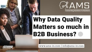 Importance of data quality in B2B businesses